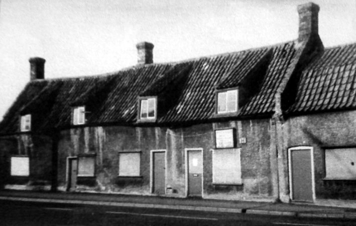 The Black Horse 1981